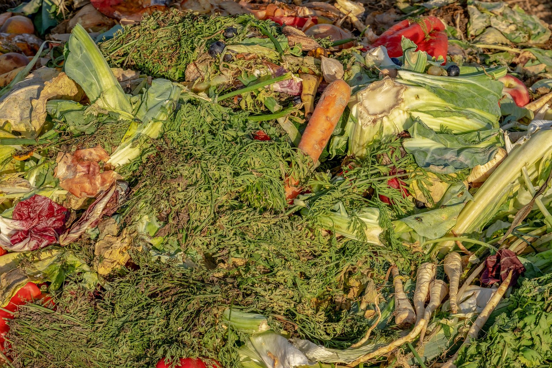 Verdorbenes Gemüse